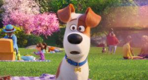 The Secret Life of Pets 2 Full Movie Download 1.2GB Hindi 1080P YTS