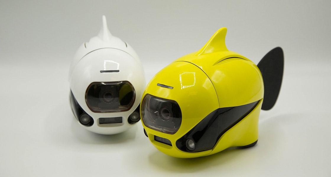 BIKI Wireless Underwater Fish Drone
