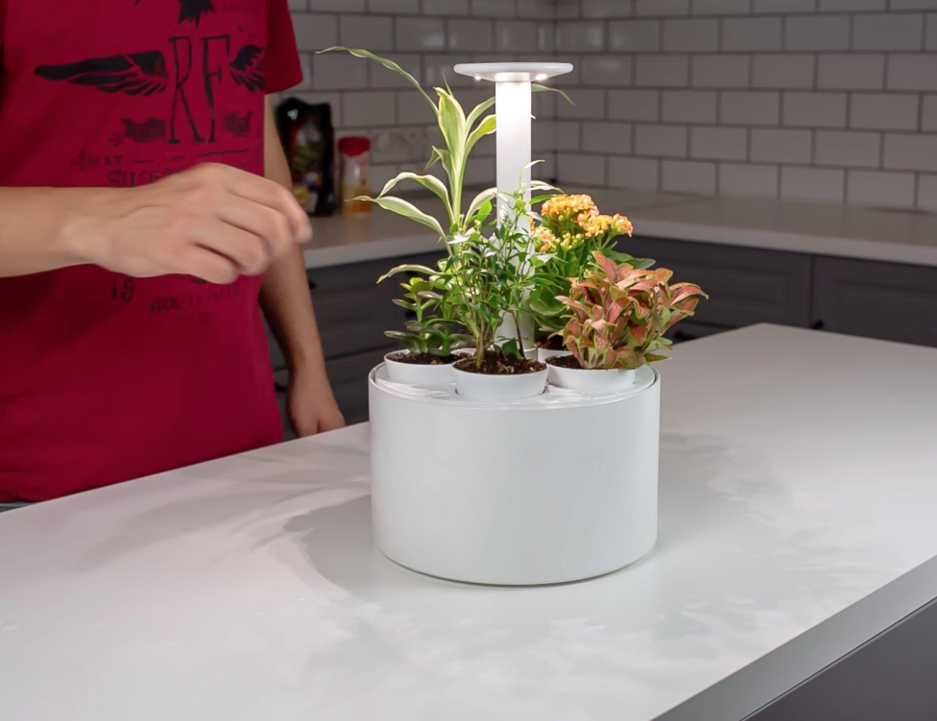 Plantone Mini Garden