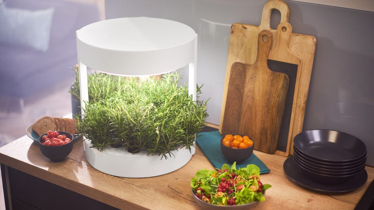 Verdeat Personalized Home Garden