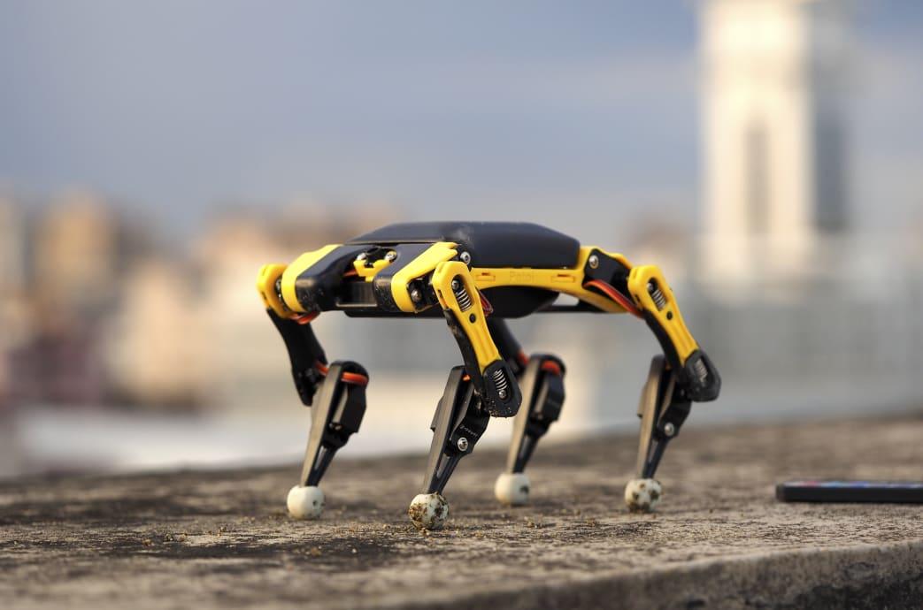 Bittle Palm-sized Robot
