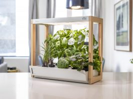 Personal Rise Smart Garden